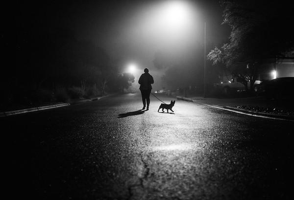 2020 Foggy Night