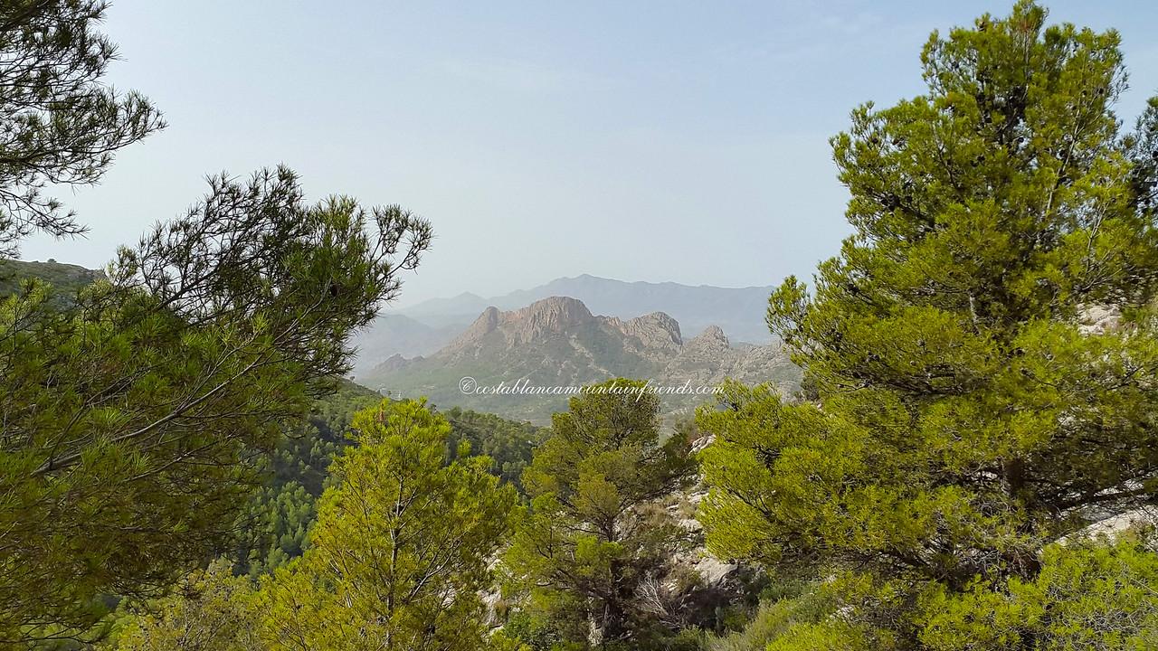 Serra dels Castellets