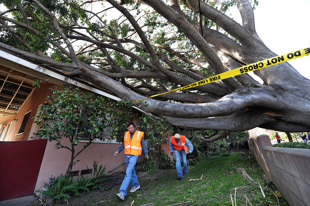 . Officials from Sierra Madre building department examine a home at 90 West Highland Avenue in Sierra Madre, after a tree fell onto the home due to the high winds that have struck the southland.  Gusts were reported to be as high as 85 mph Thursday, December 1, 2011. (SGVN/Staff Photo by Walt Mancini/SXCity)
