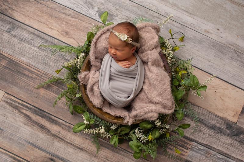 Baby Olivia Grace-1.jpg