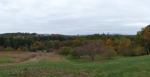 Boston Trip - Oct 2015 - Arboretum