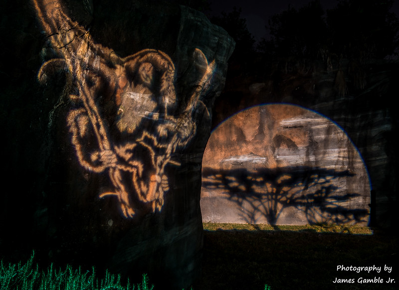 Houston-Zoo-Lights-3085.jpg