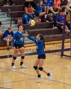 Volleyball Action 2019