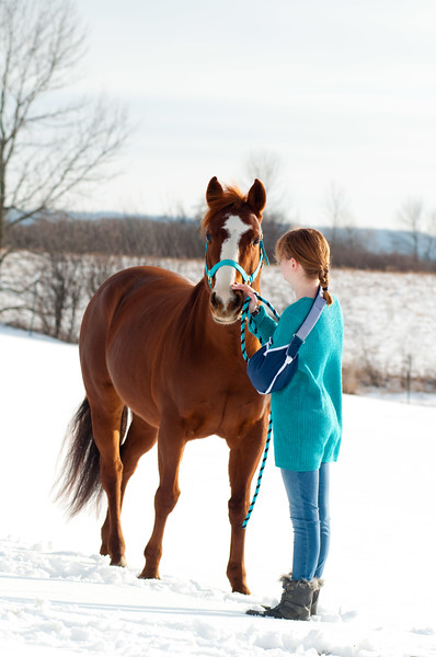 Winter Horse Play 2019