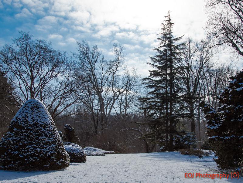 winter shoot-7.jpg