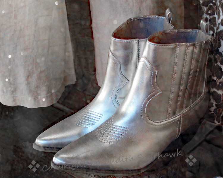 The Silver Boots - Judith Sparhawk