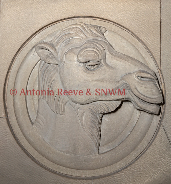Stone Carving - Camel