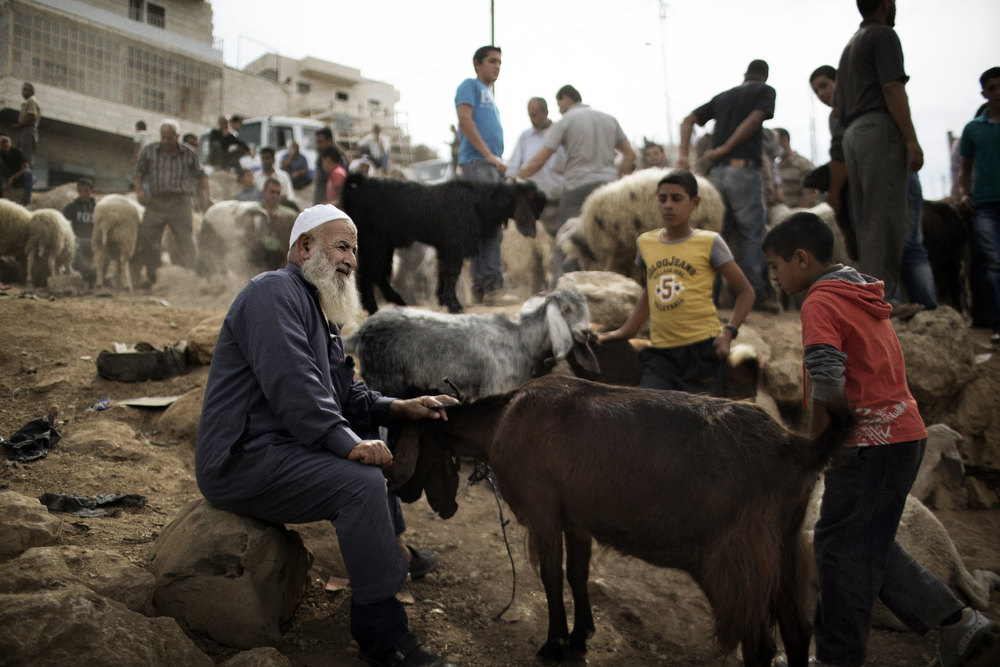 ". A Palestinian man pets a goat as people gather at a sheep market in Bethlehem on October 24, 2012, ahead of the Muslim holiday of Eid al-Adha. Eid al-Adha or ""Feast of the Sacrifice\"", marks the end of the annual hajj or pilgrimage to Mecca and celebrates in remembrance of Abraham\'s readiness to sacrifice his son to God. MARCO LONGARI/AFP/Getty Images"
