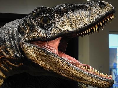 2016-09 Dinosaurs @ Flint Hills Discovery Center
