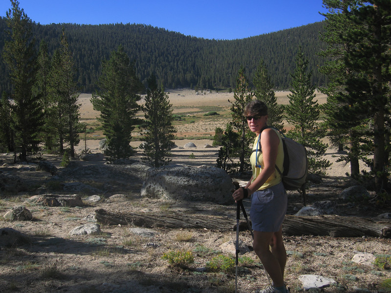 we need to cross Horseshoe Meadow to reach the Mulkey Meadow Trailhead