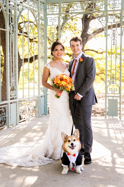 Dog-Wedding-Photos-008.jpg