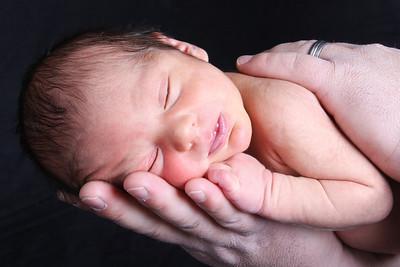 Pardo Family ~ newborns