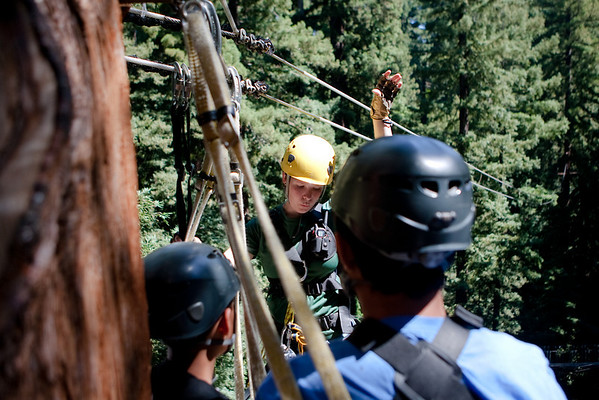 Redwood Canopy Tours 2010-07-14