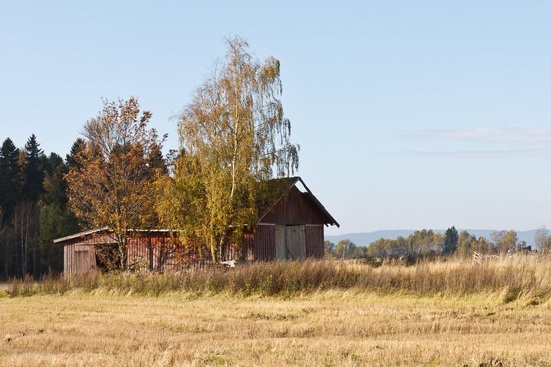 GranlundHøst2011-51