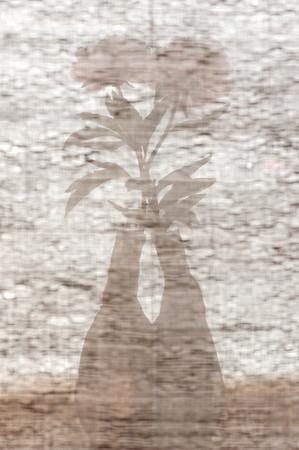 C M O - Fibres naturelles pour la décoration/Natural fibers for interior design