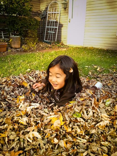 2012.10.20 - Fall