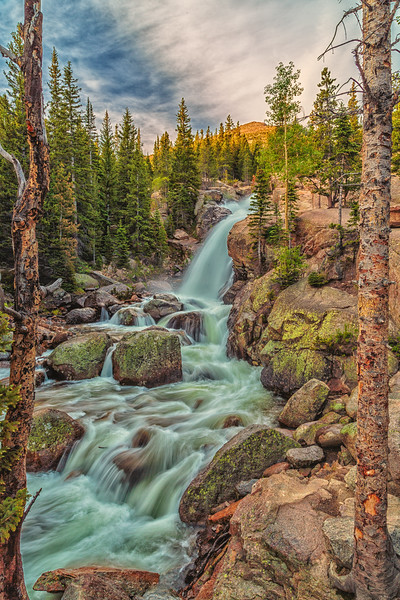 Alberta Falls - Through The Wicket