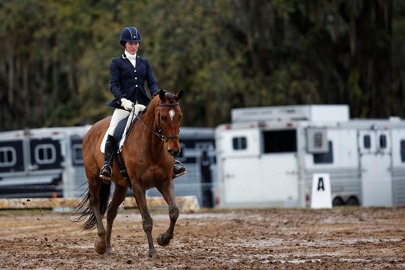 Red_Hills_ International_Horse_Trials_Day_2_3-7-2014_1670_ID.jpg
