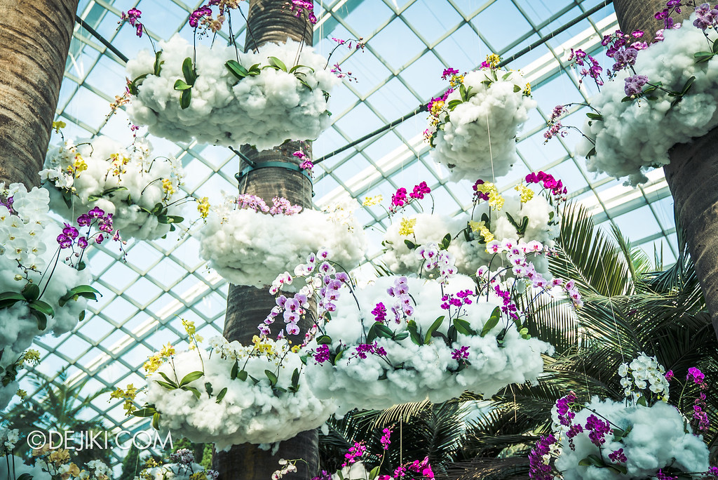 Gardens by the Bay - Orchid Extravaganza 2018 / Orchids in the Clouds
