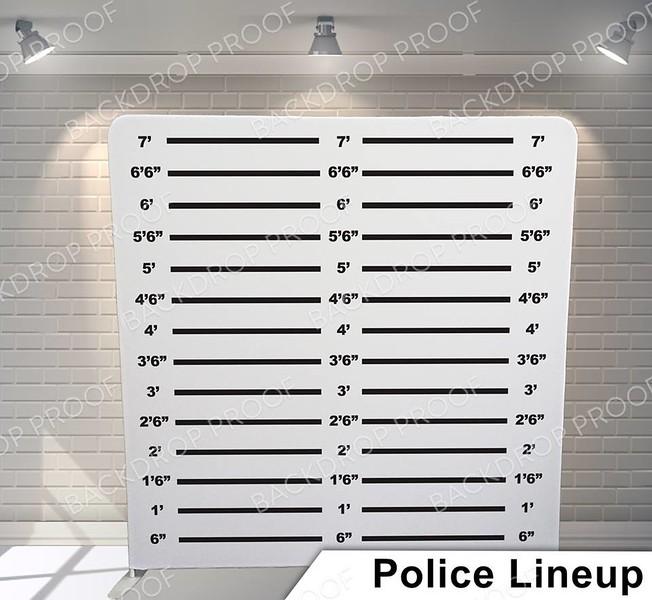 police lineup G pillow.jpg