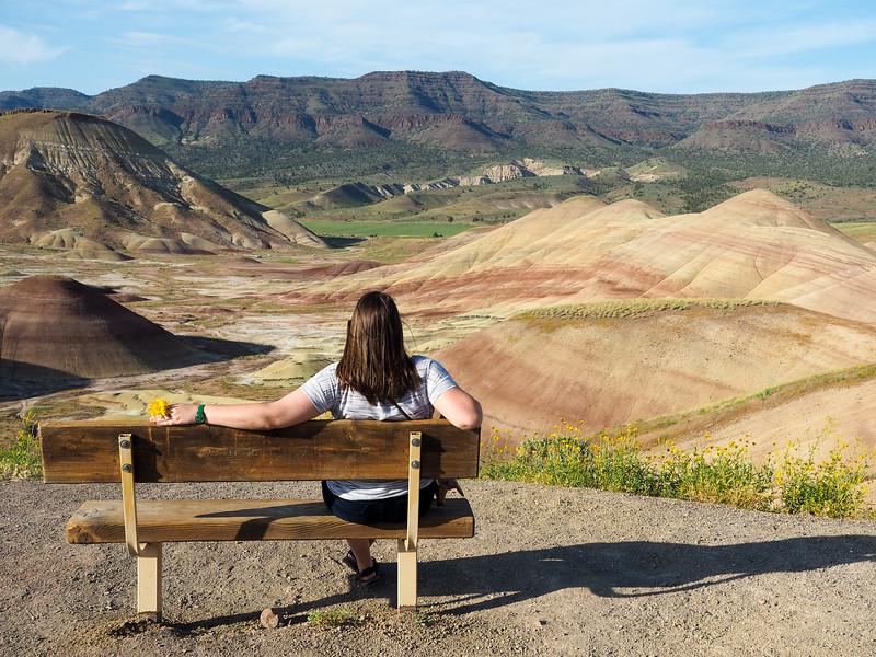 Painted Hills Overlook