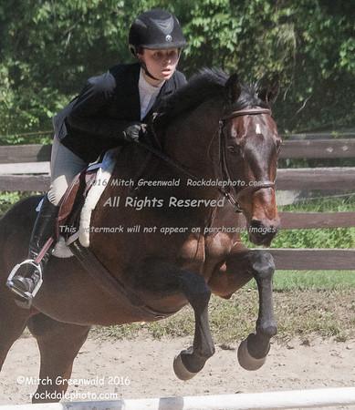 2016 Berkshire Hum. Soc. Horse Show at Overmeade