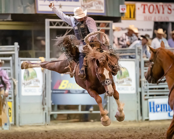 2019 Norco Rodeo - Saturday
