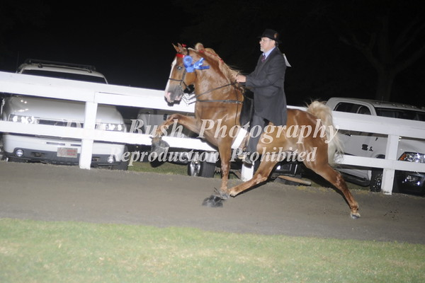 CLASS 33 AMATEUR STAKE - CANTER