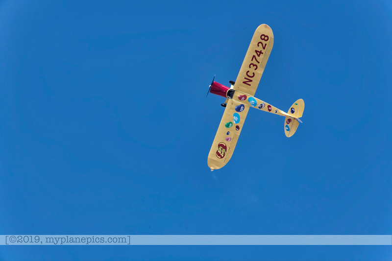 F20180324a115001_1420-Kent Pietsch Airshows-Interstate Cadet-Jelly Belly.JPG