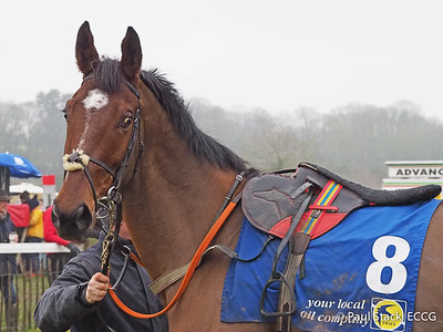 Lisgoold Point to Point - 05/01/20