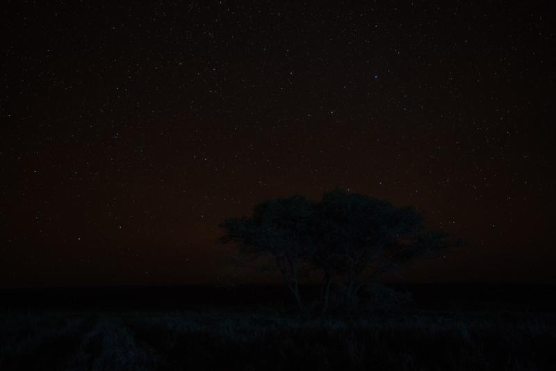 Tanzania_Feb_2018-798.jpg