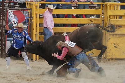 Bull riding at Burton Fair