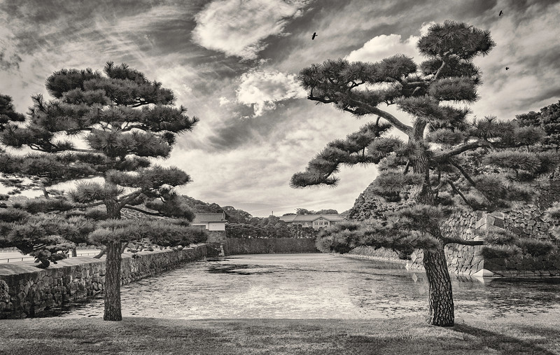 Palace Pines.