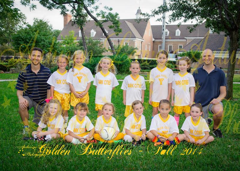 Hyer Golden Butterlies - Fall 2014
