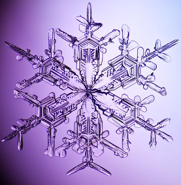 snowflake-3051-Edit.jpg