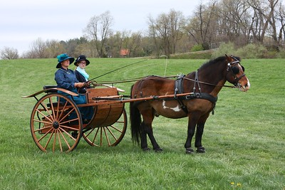 2017 Easter Carriage Ride