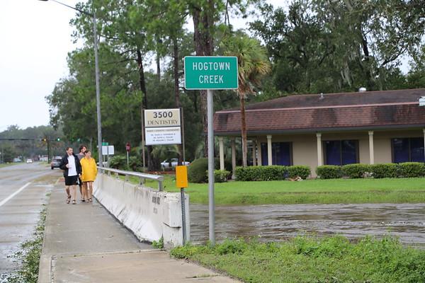Hurricane Irma Aftermath in Gainesville