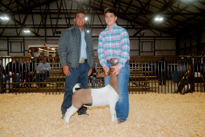 kay_county_showdown_goats_20191207-79.jpg
