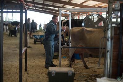 Utah State Dairy Show 2018