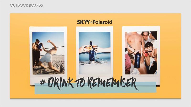 SKYY Presentation_Page_06.jpg