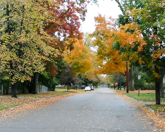 Park Street, Holly