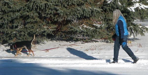 passersby winter 2015-16