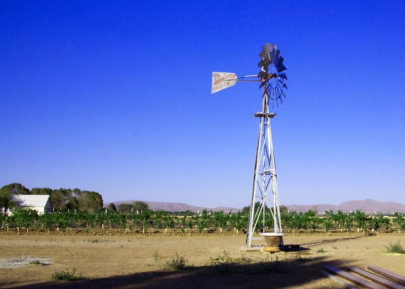 IMG_5581 windmill 2.jpg