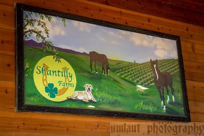 Shantilly Farms Horse Jumping