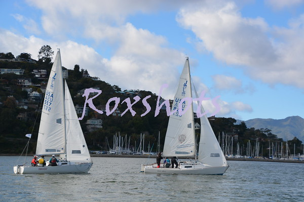 SFYC girls teams practicing on J/22's in Belvedere Cove