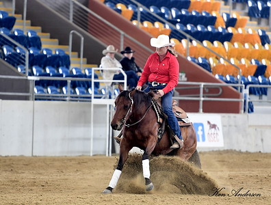 QUEENSLAND REINING STATE SHOW 2019