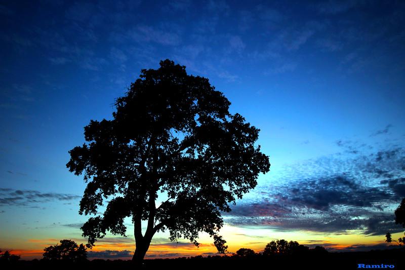 Edited Sunset 6-7-15 171.jpg