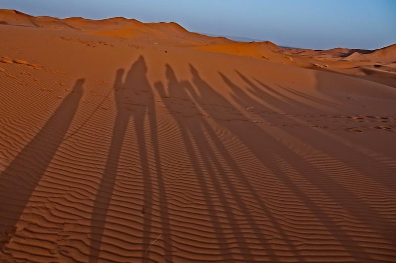 sahara desert morocco 2018 copy7.jpg