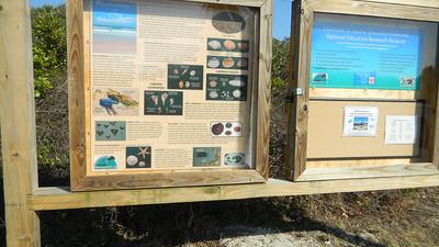 Quincey Beach 02202010
