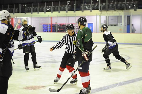 Ice Hockey 17102013
